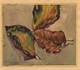 Herbstlaub 1945 - Autumn leaves